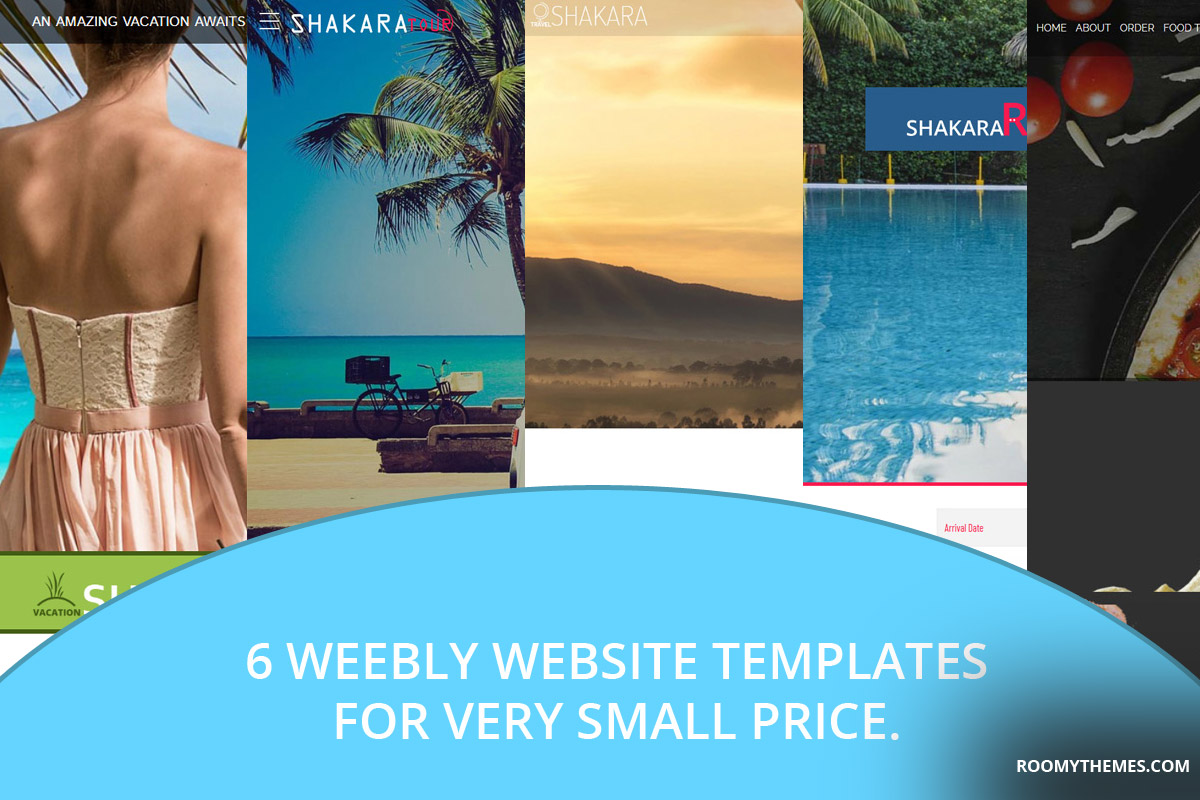 6 weebly website template for small price